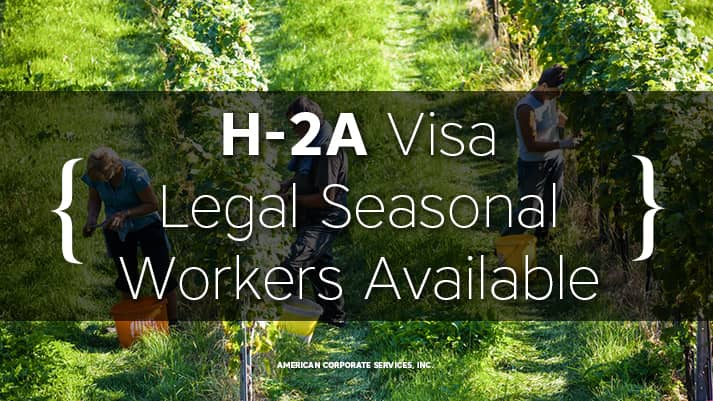 What Farmers Need To Know About H2A Visas
